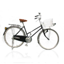 จักรยานโบราณ/จักรยานไฟฟ้า